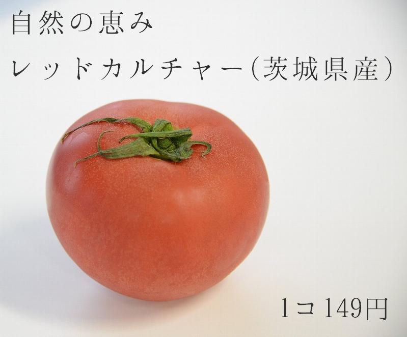 普通のトマト2