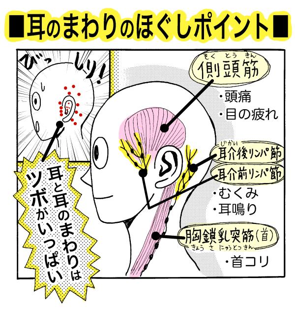 【カンタン】首コリや脳の活性化に!「耳ほぐし」で肩まで ...