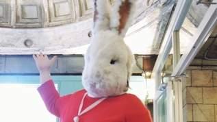 ウサギが案内する廃墟!閉ざされた古い駅が再び開いて超話題に!