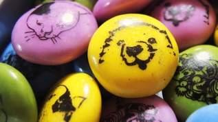 可愛すぎて食べられない!『奇想の系譜展』のイチオシお菓子レポ