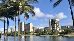 『ハワイ』って知ってますか?知られざる楽園の美術館へようこそ!