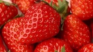 「ジャム作るのはめんどくさいな…でもイチゴ安いからちょっとでも長く楽しみたいなっていう時に凄くいい」冷凍イチゴのすすめ(1/2)