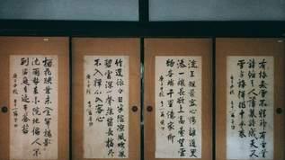【閲覧注意】漢字「取」の成り立ちが怖すぎると話題…「ぶるぶる震えた」