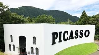 彫刻の森美術館「ピカソ館」がリニューアルオープン!明るく鑑賞しやすい空間に (1/2)