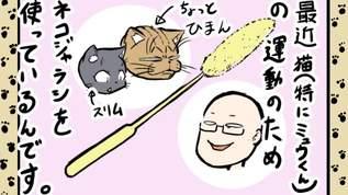 【コレジャナイ感】肥満気味のネコに運動をさせようとした結果
