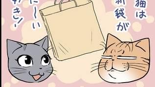 【猫実験マンガ!】ネコは紙袋が本当に大好きなのか調査してみた!
