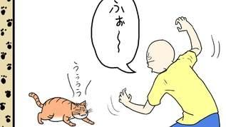 【真剣勝負】猫と飼い主のホンキの戦い!