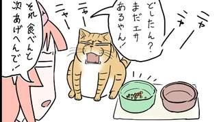 【普段なら】飼い主がネコを知った風に語った結果・・・【食べるのに!】