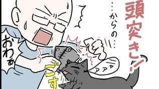 【萌え?】甘え方も猫それぞれなわけで・・・【燃え?】