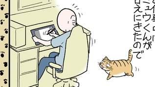 【飼い主とは一体!?】甘えに来た飼い猫をうまく撫でてるつもりだったが・・・