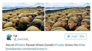 ノルウェーでトランプ氏の髪が大量に見つかった!と話題に