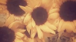 藤田朋子の「本来ならば満月」第二回:「記念日の意味」