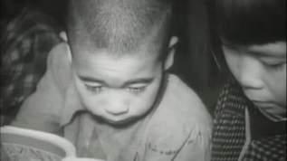【昭和28年】戦後8年経っても極貧だった奄美大島の知られざる姿
