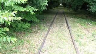 都心から1時間でいける廃線「西武安比奈線」を巡る旅