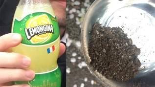 【土の味?】土を食べて「レモンジーナ」と味を比べてみた