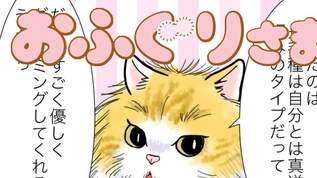 おふぐりさま「好きなタイプのメス猫は」