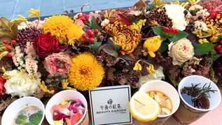 【期間限定】花好き、紅茶好き必見!午後の紅茶×ニコライバーグマンのコラボショップが可愛すぎる