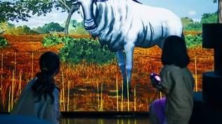小学館の図鑑から飛び出した動物たちが銀座に!「ずかんミュージアム」オープン!!