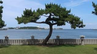 【あの著名人が住んでいた!】海が見える邸園に行ってみた。