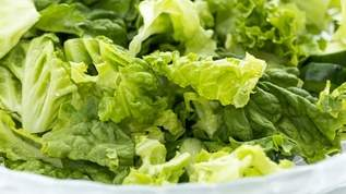 サブウェイで野菜を「全部多めで」と頼むより「全部○○で」と頼むと無料でもっと野菜の量が増える→ネット民「有益な情報」