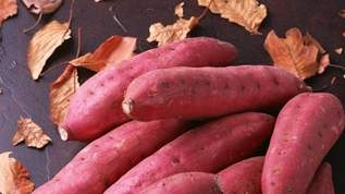 サツマイモを炊飯器に入れて白米炊飯モードで炊いた結果…→「感動しました」「天才だ」の声