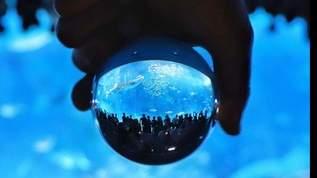 水族館の私的Tierランキング、「Sランク」は名古屋、鳥羽、沼津深海、海遊館…→ネット民からオススメ水族館がぞくぞく