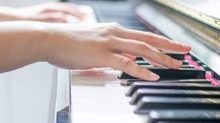 ビックカメラにて、店頭の電子ピアノでヨドバシカメラのテーマソングを試奏した結果…→ネット民「間違いなく再犯防止」