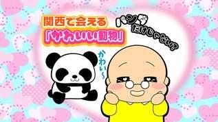 パンダだけじゃない! 関西で会える「かわいい動物」