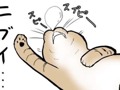 【ネコまんが】動きのニブイ猫でも一瞬で素早く動き出すお手入れとは!?