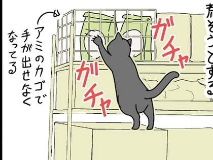 【猫】おまえはそこまで本能に忠実なのか!?(しかもズルい!?)