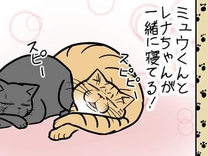 【唯猫独尊】一線をたやすく超えた猫を目の当たりにしたウサ子さんは・・・