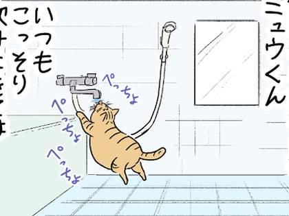 【これも成長!?】我が家の猫が苦手を克服したのですが・・・【つらみ】