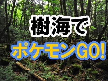 【ポケモンGO】富士の樹海でポケモンを探してみた