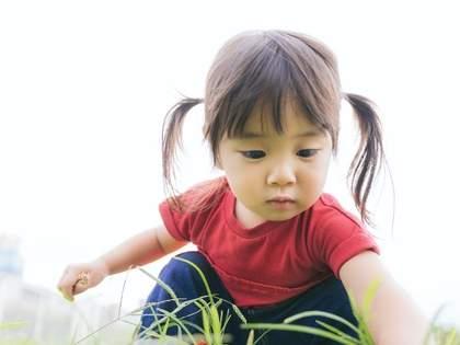 「ダンゴムシを持って帰りたい息子」に対する母の説得が秀逸すぎる…→ネット民「その方法頂きます」の声